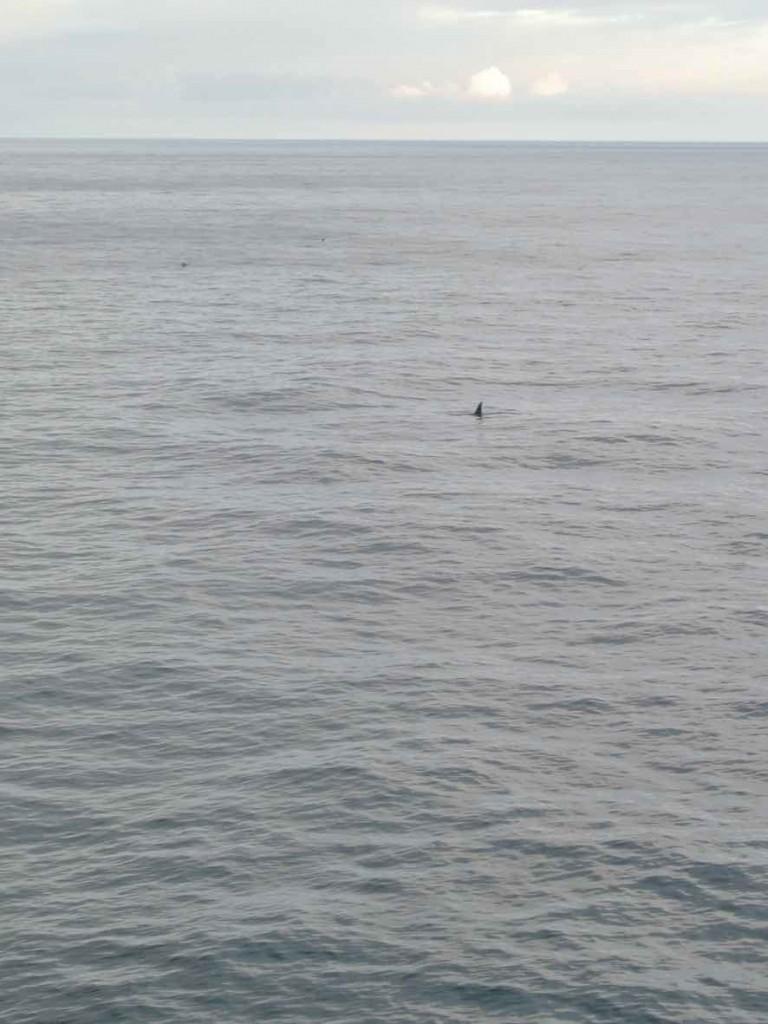 Atlantische Oceaan, het passeren van de Poolcirkel