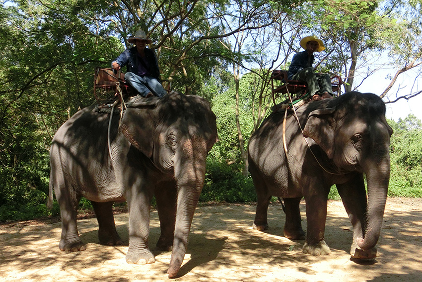 Laem Chabang – Thailand, ik heb op een olifant gereden