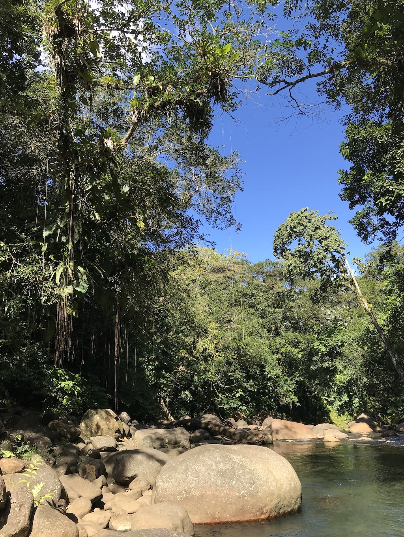 Guadeloupe | Zoo