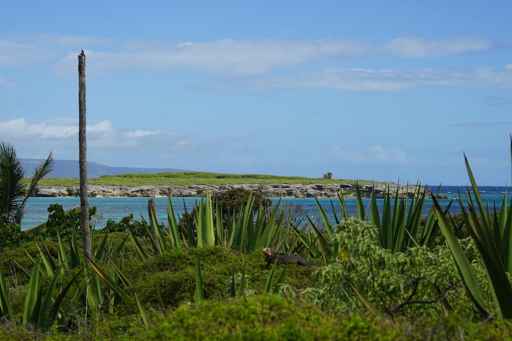 Guadeloupe | Petit Terre